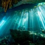 Cenoten, El Eden, Mexiko, Tauchen, Yucatan