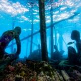 Pulau Pef, Raja Ampat-7