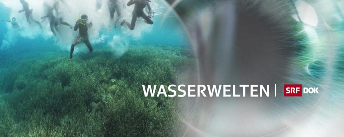 2018_07 E-Flyer Wasserwelten_sbe_2Jx