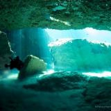 Casa Cenote, Cenoten, Mexiko, Tauchen, Yucatan