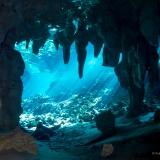 Cenoten, Gran Cenote, Mexiko, Tauchen, Yucatan